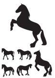 De zwarte Vastgestelde Vectorillustratie van het Paardsilhouet Royalty-vrije Stock Afbeeldingen