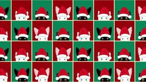 De zwarte Witte Cat Rabbit Chess-Rode Groene Achtergrond van raadskerstmis stock videobeelden