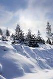 De Zweedse winter Royalty-vrije Stock Afbeeldingen