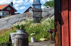 De Zweedse zomer Royalty-vrije Stock Fotografie