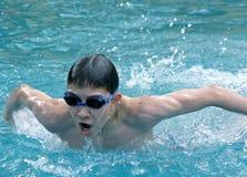 De zwemmende vlinder van de jongen in een pool Stock Afbeeldingen