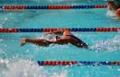 De Zwemmer van de vlinder Royalty-vrije Stock Foto