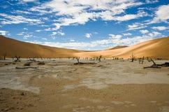 Dead Acacias in the Vlei - Sossusvlei - Namibia Stock Photos