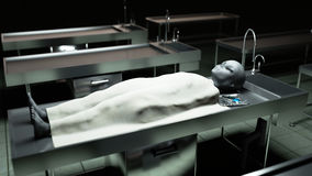 The dead alien in the morgue on the table. Futuristic autopsy concept. 3d rendering. The dead alien in the morgue on the table. Futuristic autopsy concept. 3d royalty free illustration