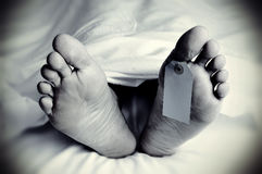 Dead body with a blank toe tag, in monochrome. Closeup of the feet of a dead body covered with a sheet, with a blank tag tied on the big toe of his left foot, in Royalty Free Stock Image