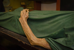 The dead body. Focus on hand decay.  Royalty Free Stock Photos