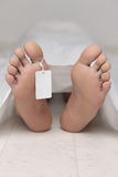 Dead body at a morgue Stock Images