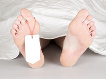 Dead body with toe tag. Under a white sheet Royalty Free Stock Photography