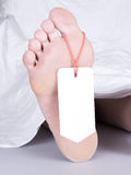 Dead body with toe tag. Under a white sheet Royalty Free Stock Photos
