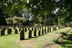 Dead and Buried. An Old Yorkshire Cemetery royalty free stock photos