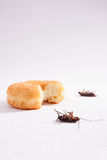 Dead cockroach and food vertical Stock Image
