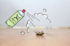 Free Dead Cockroach On Floor , Pest Control Concept Stock Images - 69414564