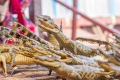 Dead crocodiles in souvenir shop, siem reap cambodia Royalty Free Stock Photos