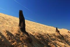 Dead desert Royalty Free Stock Image