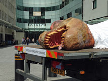 Dead Dinosaur at the BBC Royalty Free Stock Images