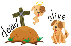 Dead dog under the ground and dog alive Stock Images