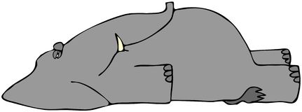 Dead Elephant. This illustration depicts a dead elephant laying on its back Royalty Free Stock Photo