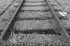 Dead end, Railroad tracks Royalty Free Stock Photo