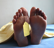 Dead feet stock photo