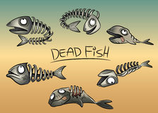 Dead fish leftovers illustration Royalty Free Stock Image