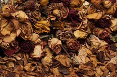 Dead flowers on the ground. Dead flowers on the brown ground without persons. Dead Nature with flowers Stock Photography