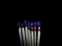 Dead heads. Of match sticks once burned altogether , they are just born to burn Royalty Free Stock Images