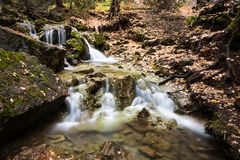 Dead Horse Creek Cascade Royalty Free Stock Images
