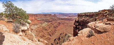 Dead Horse Point, Colorado river, Utah, USA. Royalty Free Stock Photo