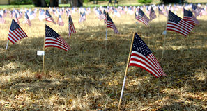 Dead in Iraq. A church placed flags for each American killed in Iraq on their grounds Stock Photos
