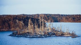 Dead island in northern sea Royalty Free Stock Photography