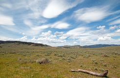 Dead log and Rolling Hills under cirrus lenticular cloudscape in northern Yellowstone National Park in Wyoming United States. Dead log and Rolling Hills under Royalty Free Stock Photo