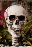 Dead Man Stock Photography
