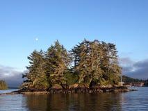 Deadman Island, Tofino, BC Royalty Free Stock Photos