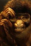 Dead Monkey In Formaldehyde Jar Stock Photo
