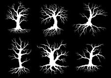 Dead old trees silhouettes with roots Royalty Free Stock Images