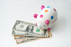 Dead piggy bank Royalty Free Stock Photo