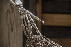 Dead pirates hand - old and dusty fake skeleton hand tangled in fishing net against blurry background.  stock photography