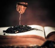 Dead Plant Over Book Stock Photo