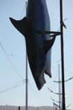 Dead Plastic Shark Stock Image