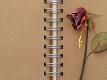 Dead rose and notebook Royalty Free Stock Photos