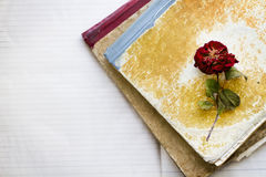 Dead rose on two dirty old notebooks Royalty Free Stock Images