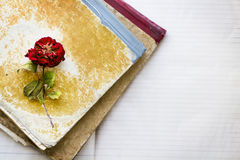 Dead rose on two dirty old notebooks Royalty Free Stock Photos