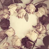 Dead Roses frame  in the form of heart. Fading rose. Dead Roses frame  in the form of heart Royalty Free Stock Photography