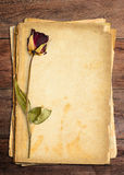 Dead roses and paper. Dead roses put on old paper royalty free stock photos