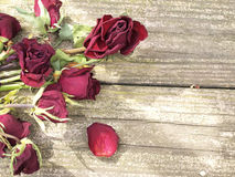 Dead roses on wood Stock Photo