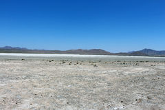 Dead salt lake. In Mongolia. Darkhan aimak stock photography