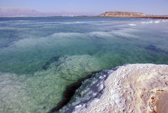Dead sea Royalty Free Stock Photos