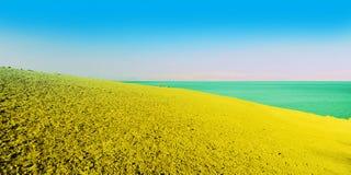 Dead Sea. Sandy Beach Of Dead Sea, Israel. Early In The Morning Stock Photos