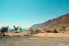 Dead Sea . The road along the Dead Sea Royalty Free Stock Photo