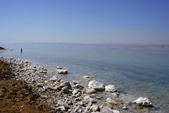 Dead sea Royalty Free Stock Photo